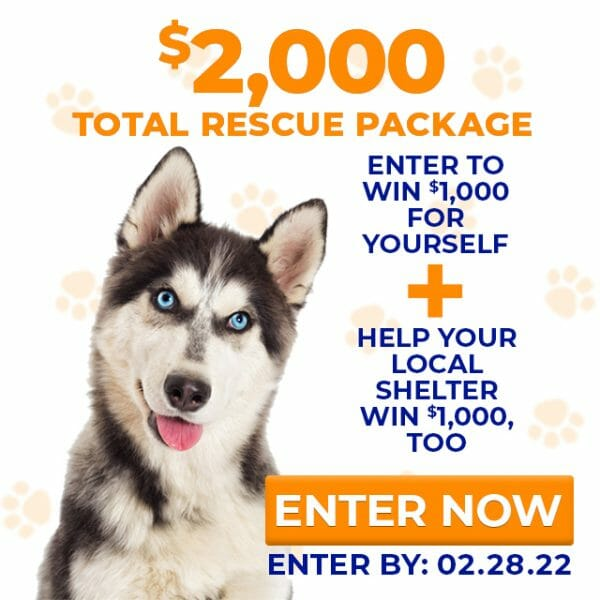 dog rescue near me charitable giveaway